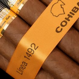 cohiba siglo vi 1492 260x260 We want to know your thoughts