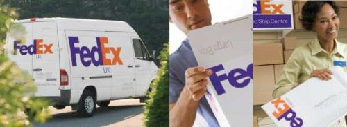 FedexTracking 1 500x184 Shipping Info